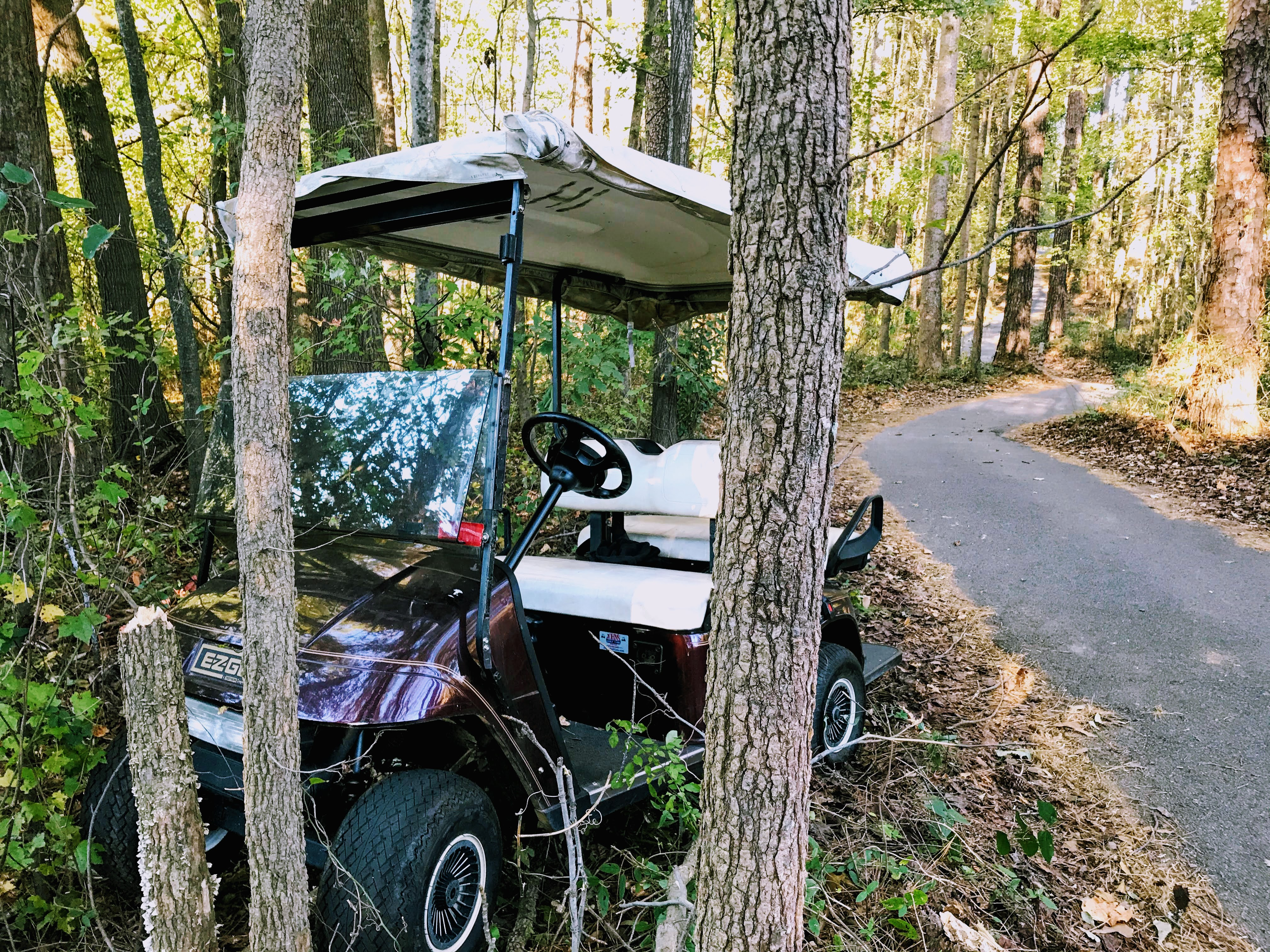 golf cart accidents