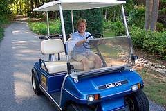 1985 club car golf cart images frompo 1. Black Bedroom Furniture Sets. Home Design Ideas