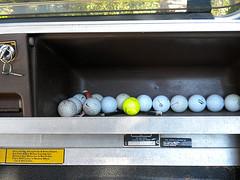 golf cart serial number